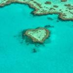 heart-1492445_640
