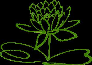 lotus-blossom-304876_1280
